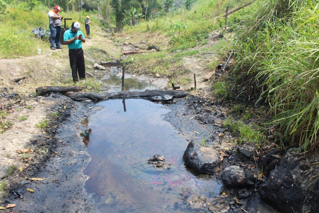Empresas al servicio de Pemex provocan ecocidio en Papantla